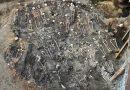 Ofiary zarazy i gilotyny – masowe groby na Targu Siennym