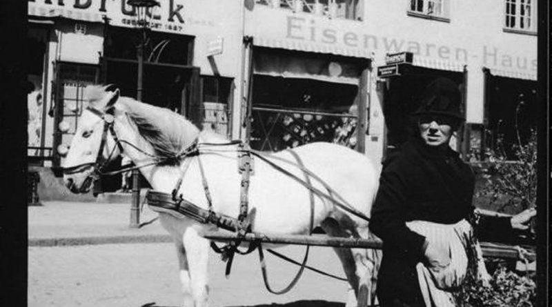 Gdańsk i Gdynia 1937