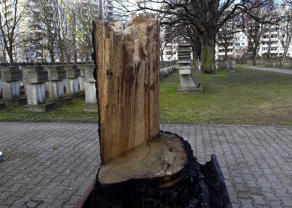 wypalony krzyż