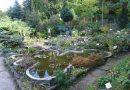 Zaczarowany ogród w barwach jesieni
