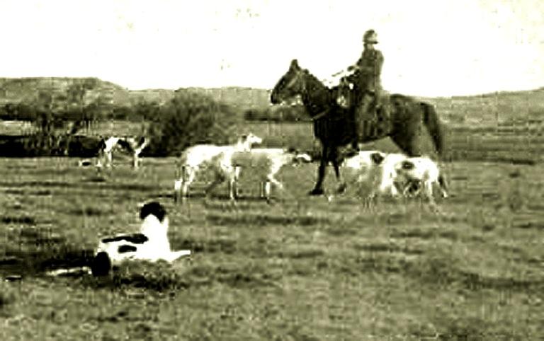 """""""Wolfer"""" z Wyoming w roku 1904."""